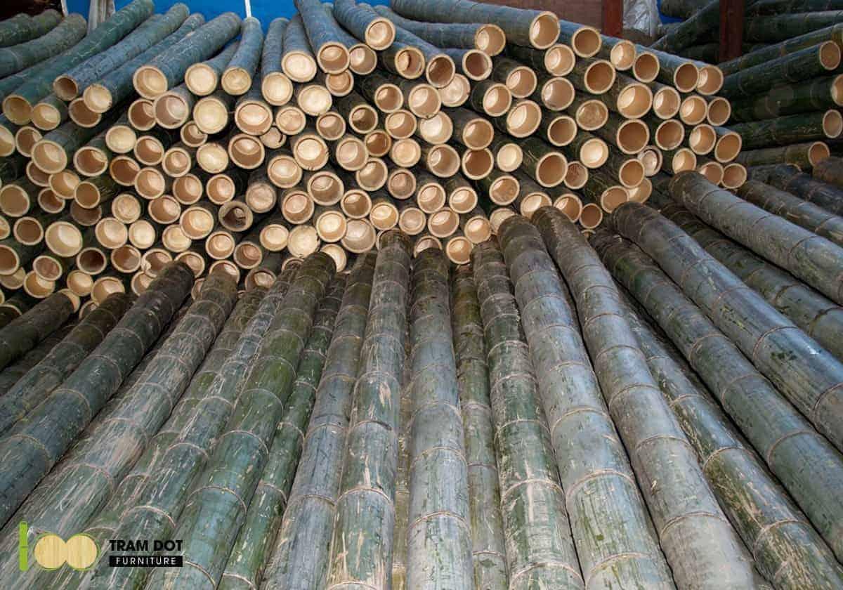 Lựa chọn từng ống tre một cách cẩn thận