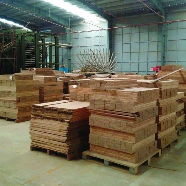 TRAMDOT | Nhà máy sản xuất tấm tre ép tại Thanh Hóa